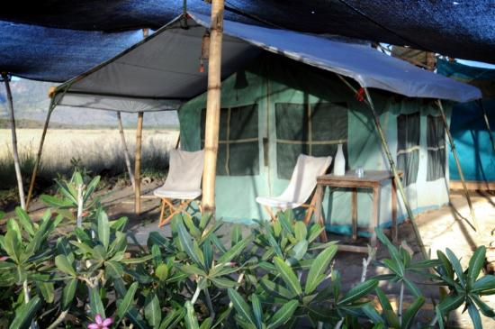 Ngare Sero - Lake Natron Camp: Our tent.