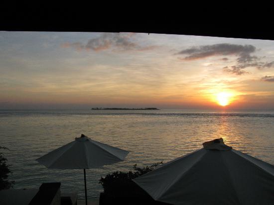 Wakatobi Dive Resort: View from room