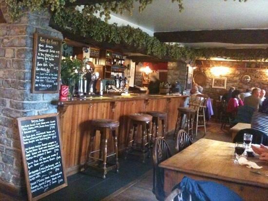 The Natterjack: The Bar