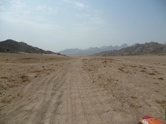 Ktm Egypt Calling Dakar Adventure Tours : Sinai Desert