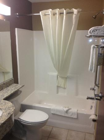 Microtel Inn and Suites by Wyndham Austin Airport: Bathroom