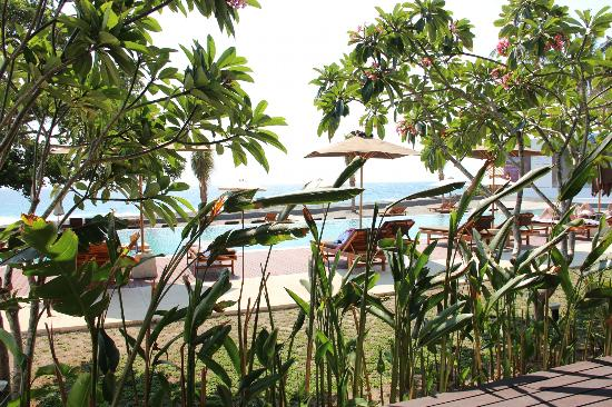 Living Asia Resort and Spa Lombok: View