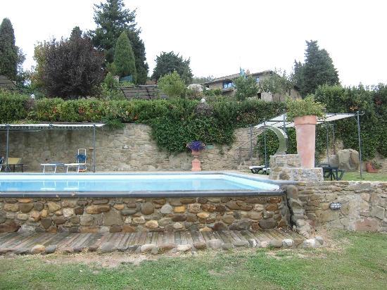 Rifugium: The Pool Area