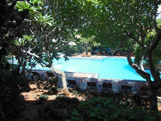 Mandara Rosen: Nice pool