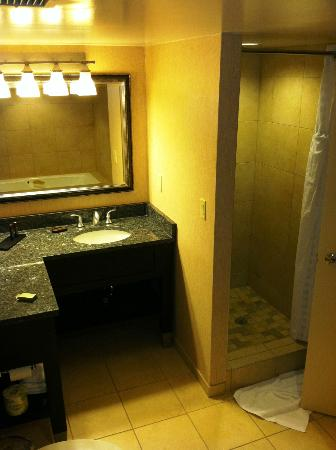 Embassy Suites by Hilton Raleigh - Crabtree: King room sink / shower