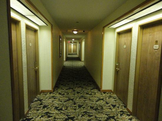 El Cortez Hotel & Casino: hotel