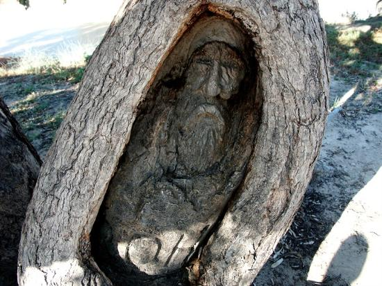 "Thargomindah, Australia: Dig Tree - Carved face of Burke by guide ""Dick"""