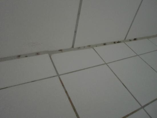 Schimmel en haren vorige gasten in de douche - Foto van Hotel ...
