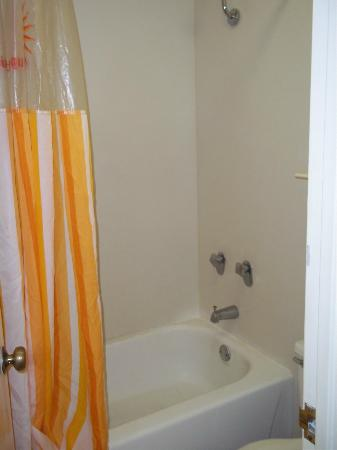 La Quinta Inn Baton Rouge University Area: Shower needs updating (but it worked)