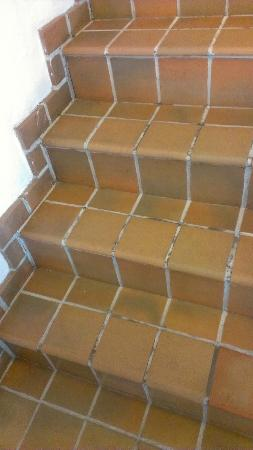 Majestic Hotel South Beach: Hallway steps with mildew grout