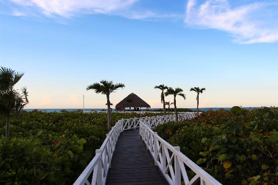 Melia Cayo Santa Maria: The main pathway to the beach.