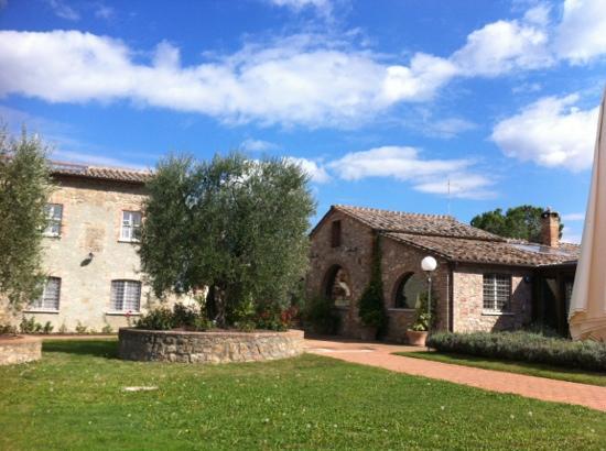 Agriturismo La Sovana: Ansicht vom Pool
