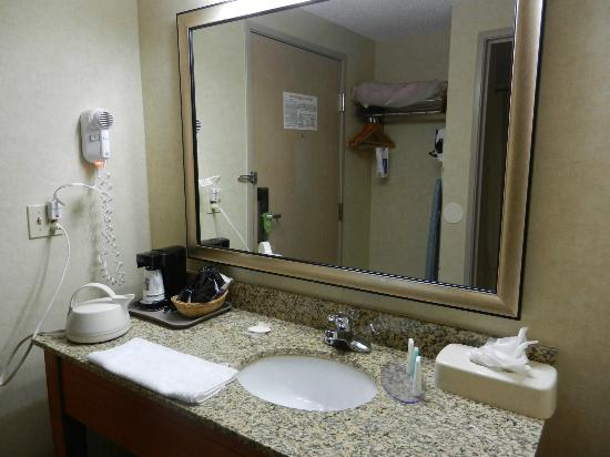 Comfort Inn Near Greenfield Village: bathroom