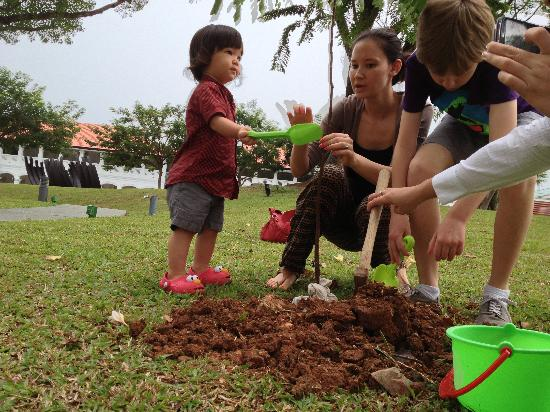 Capella Singapore: Oliver's first tree!!