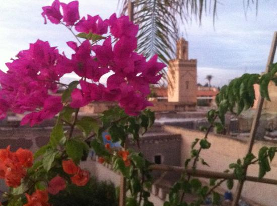 Riad Dar Zaman: view from roof terrace toward Jemaa al Fna