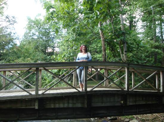 Calhoun's Gatlinburg: Stop by Calhones Square