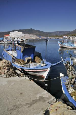 The Kalloni Bay Hotel: The fishing Harbour