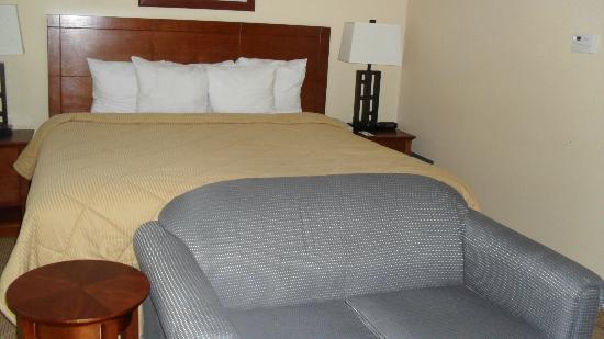 Comfort Inn Cockatoo Near LAX Airport: Letto e divano