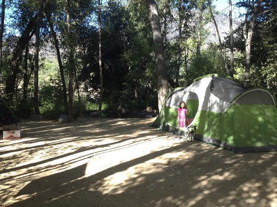 Camp James Campground: Spacious campsite