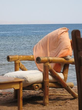 Star Of Dahab Hotel: Seaside Cafe @ Star of Dahab