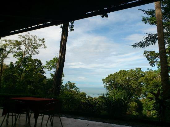 Mar y Selva Ecolodge: View from the restaurant