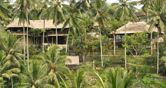 The Kampung Resort Ubud : Kampung Cafe and Cottages