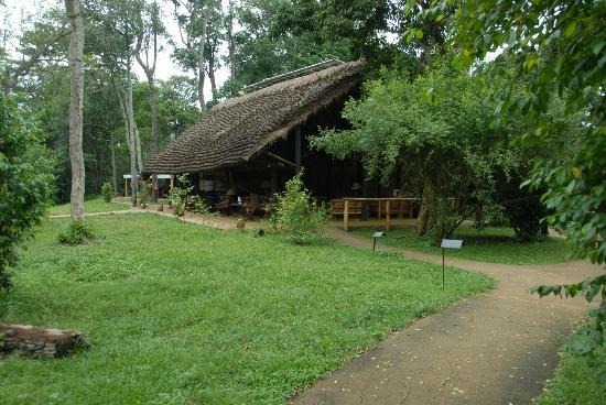 Ishasha Wilderness Camp: Ishasha main lodge building - guest dining room, lounge, library & bar