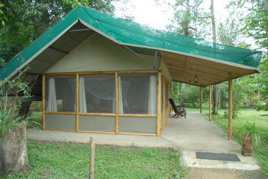 Ishasha Wilderness Camp: huge guest tented suites, example of the large bug-screened windows & verandah overhang