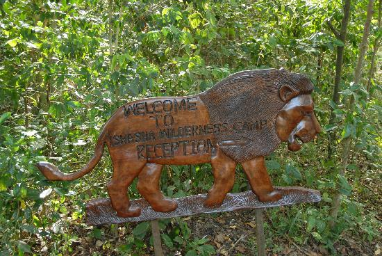 the hand-crafted carved welcome logo at Ishasha Wilderness Camp