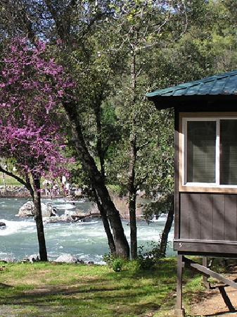 American River Resort: getlstd_property_photo