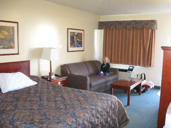 Travelodge Drumheller AB : Room (Couch was a hide-a-bed)