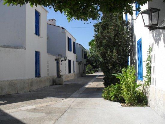 Aleksandar: Typical street within the villa complex