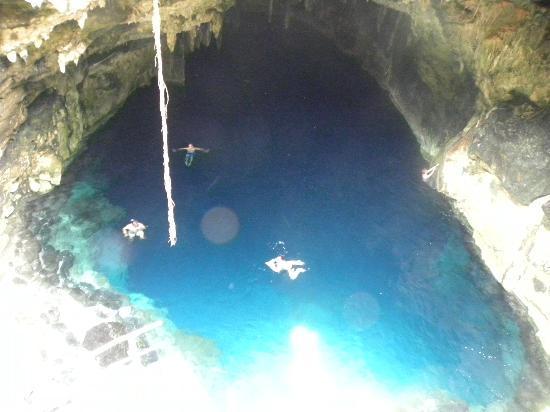 Cenotes: crystal clear cenote!