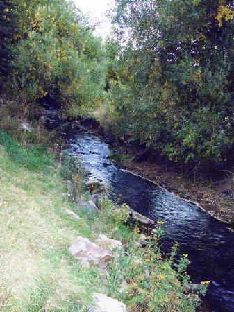Deadwood Gulch Resort: Creek behind hotel