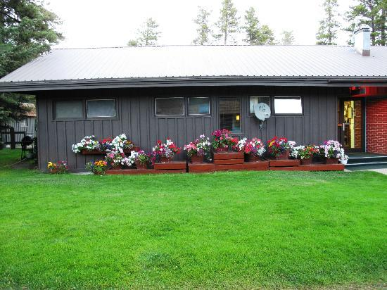 Mountain Pine Motel: The office, beautiful flowers