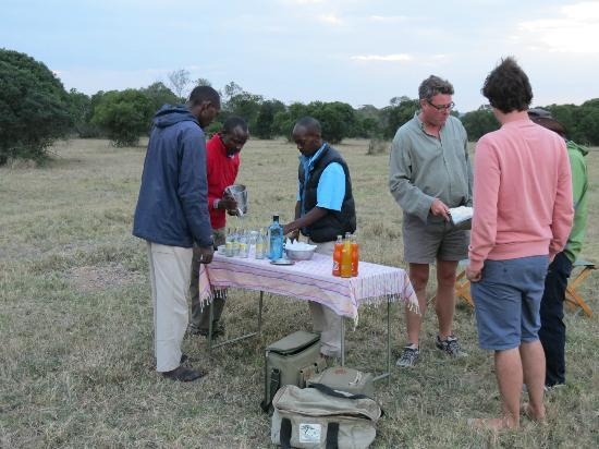 Ol Pejeta Bush Camp, Asilia Africa: Bush bar