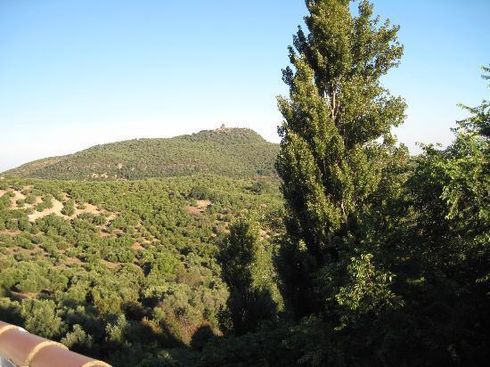 Hotel del Carmen : photo taken from terrace