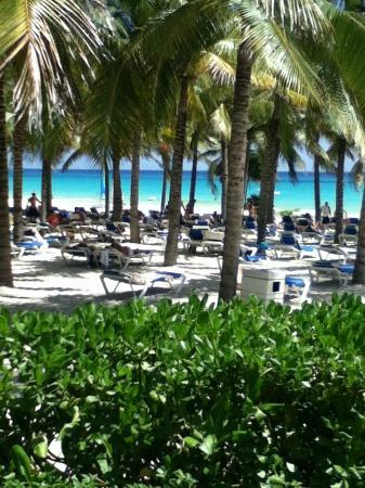 Hotel Riu Palace Riviera Maya : Plenty of Loungers