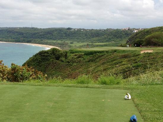 Royal Isabela: Hole 17 par 3.