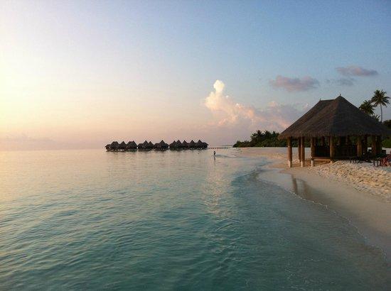 Coco Palm Dhuni Kolhu: de la plage cote lagon