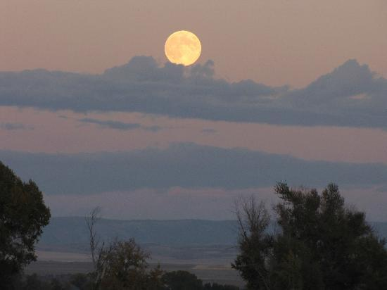 Blue Heron Inn: Full Moon rising from the clouds; taken from the hot tub deck.