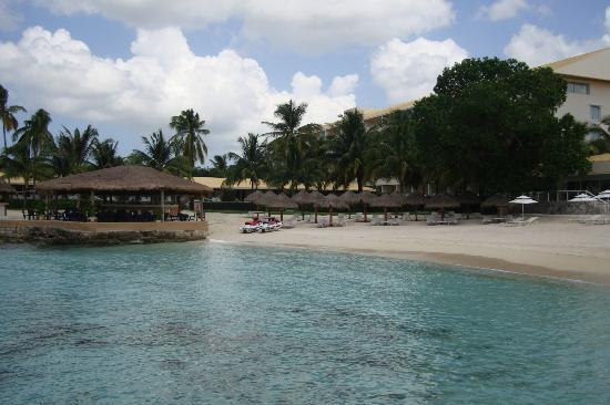 Presidente Inter-Continental Cozumel Resort & Spa: View from the outdoor restaurant of the snorkel area