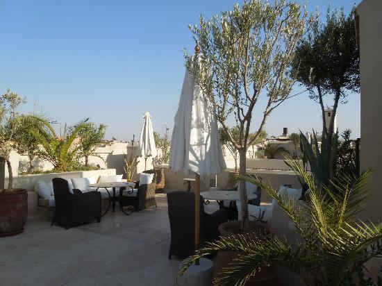 Riad Camilia: Rooftop