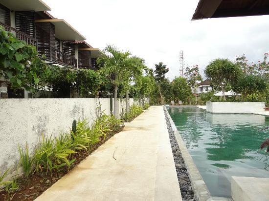Sayang Sanur Terrace House: pool