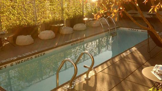 Hotel Americano: The pool in autumn.