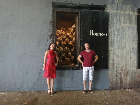 Hotel Boutique la Cofradia: агава в печке - будущая текила