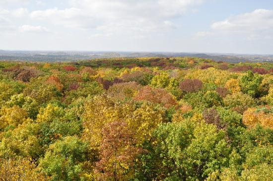Kettle Moraine State Forest: another view from Parnell tower