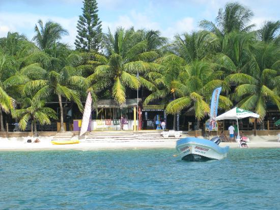 Bananarama Beach and Dive Resort: Bananaram - view from the water taxi