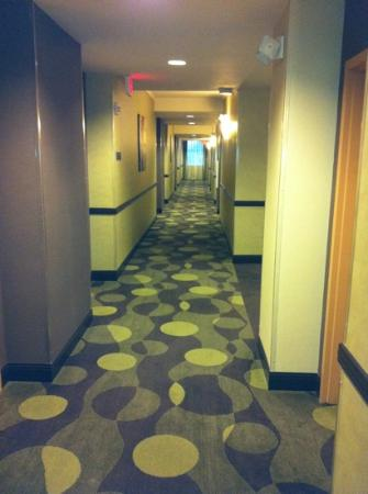 BEST WESTERN PREMIER Miami International Airport Hotel & Suites: corridors