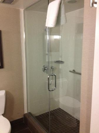 Delta Calgary South Hotel: Massive shower